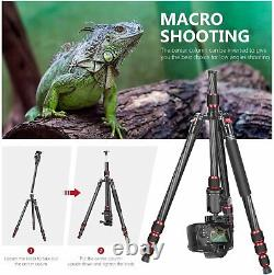 Neewer 79 Camera Bracket Carbon Tripod with Ball Head, 1/4 Quick Shoe Plate